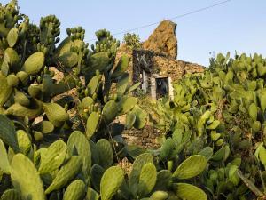ruderi-medievali-e-casa-contadina